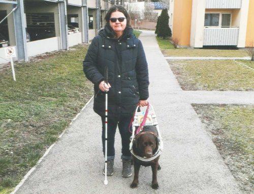 Blindenführhund für Niederösterreich St. Pölten